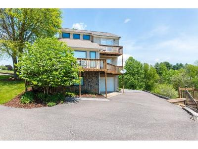 Abingdon Single Family Home For Sale: 21695 Lakeshore Drive #1