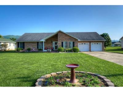 Elizabethton Single Family Home For Sale: 110 Tad Lincoln Ct