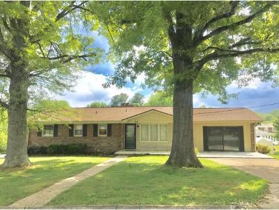 Johnson City Single Family Home For Sale: 1616 Seward Drive