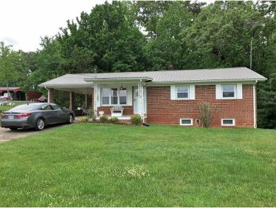 Greeneville Single Family Home For Sale: 156 Links Mill Circle