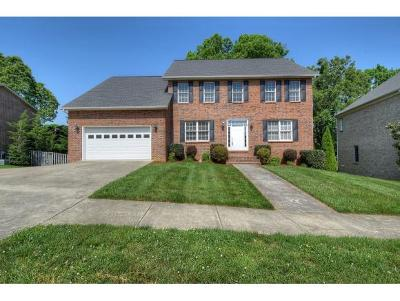 Johnson City Single Family Home For Sale: 208 Lee Carter Drive