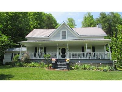 Unicoi Single Family Home For Sale: 3810 Old Asheville Highway
