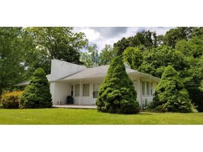 Greeneville Single Family Home For Sale: 5055 East Andrew Johnson Highway