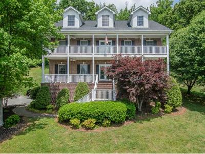 Johnson City Single Family Home For Sale: 3342 Berkshire Circle