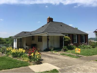 Elizabethton Single Family Home For Sale: 361 Pine Hill Rd
