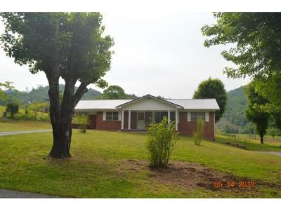 Rogersville Single Family Home For Sale: 1045 Tarpine Valley Rd.