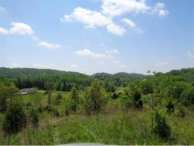 Bristol Residential Lots & Land For Sale: 24219 Johnson Chapel Road