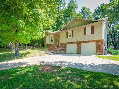 Rogersville Single Family Home For Sale: 248 Lauren Drive
