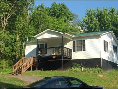 Rogersville Single Family Home For Sale: 167 N Brummitt