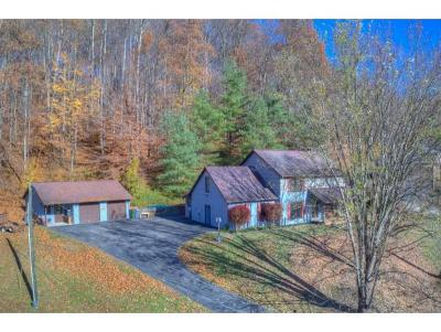 Blountville Single Family Home For Sale: 321 Greentree Drive