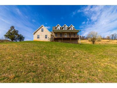 Blountville Single Family Home For Sale: 250 Tipton Lane