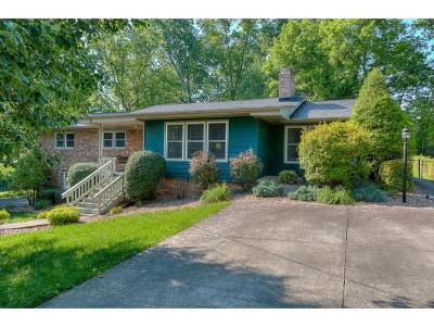 Johnson City Single Family Home For Sale: 311 Lambeth Drive
