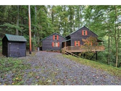 Roan Mountain Single Family Home For Sale: 133 Blevins Road