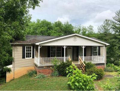 Single Family Home For Sale: 3707 Chert Drive