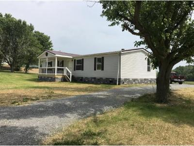 Greeneville Single Family Home For Sale: 8690 Horton Hwy