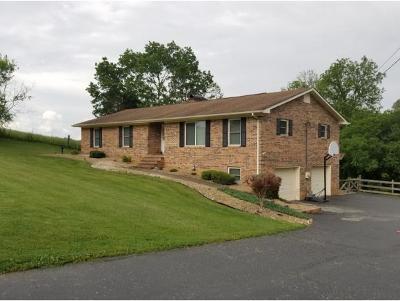 Greeneville Single Family Home For Sale: 311 Browns Bridge Rd.