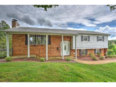 Johnson City Single Family Home For Sale: 1700 Sundale Road