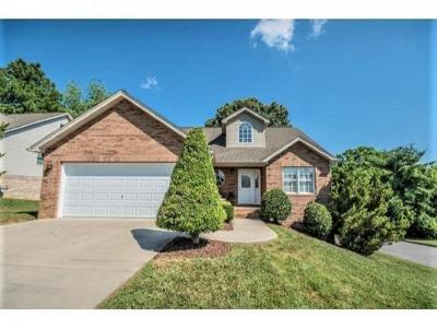Kingsport Single Family Home For Sale: 300 Stone Court