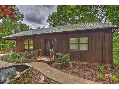 Kingsport Single Family Home For Sale: 484 Lakeside Drive