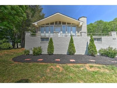 Elizabethton Single Family Home For Sale: 913 Charlie St