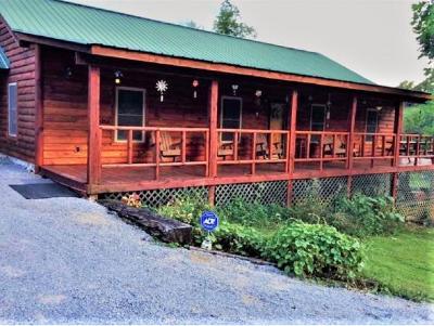 Elizabethton Single Family Home For Sale: 130 Faith Lane