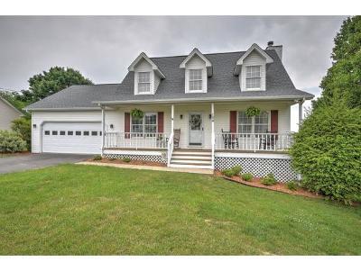 Jonesborough Single Family Home For Sale: 194 Dean Archer Road