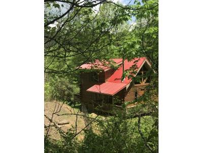 Unicoi Single Family Home For Sale: 301 Morris Road