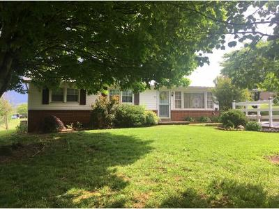 Greeneville Single Family Home For Sale: 38 Tusculum Circle
