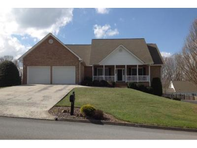 Jonesborough Single Family Home For Sale: 204 Holland View Dr.