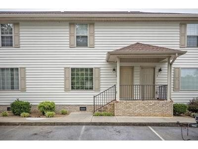 Johnson City Condo/Townhouse For Sale: 563 Boring Chapel Rd. #10