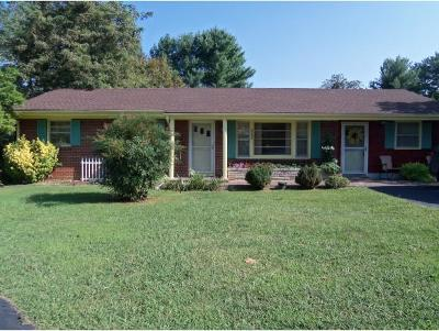 Johnson City Single Family Home For Sale: 3113 Indian Ridge Rd