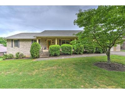 Piney Flats Single Family Home For Sale: 467 Rangewood Rd