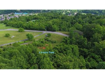 Johnson City Residential Lots & Land For Sale: 244 Carroll Creek Road