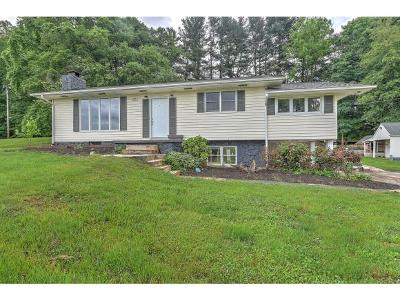 Johnson City Single Family Home For Sale: 2991 Indian Ridge Rd.
