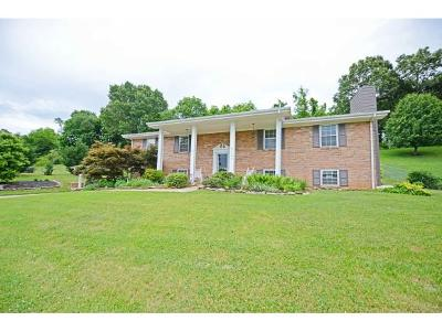 Greeneville Single Family Home For Sale: 1707 Cindy Dr