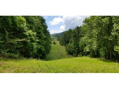 Unicoi Residential Lots & Land For Sale: 210 Pine Hill Road