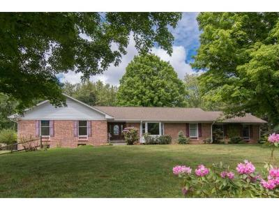 Bristol Single Family Home For Sale: 145 Maxwell Dr