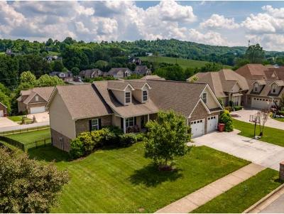 Johnson City Single Family Home For Sale: 121 Springwinds Loop
