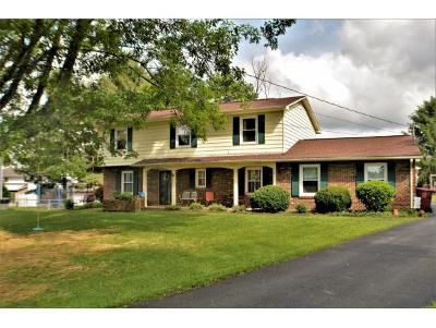 Johnson City Single Family Home For Sale: 3 Queensboro Circle