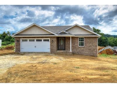 Elizabethton Single Family Home For Sale: 166 Camelot Court