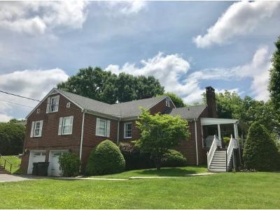 Bristol Single Family Home For Sale: 1470 Holston Drive