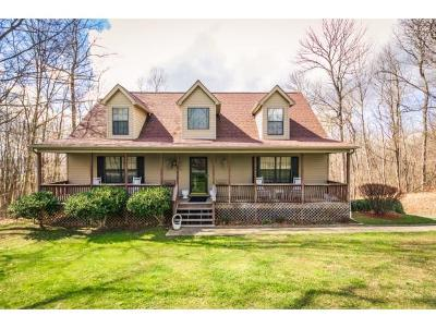 Single Family Home For Sale: 901 Hales Chapel Rd