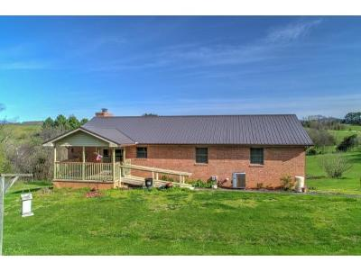 Greeneville Single Family Home For Sale: 11691 Newport Hwy