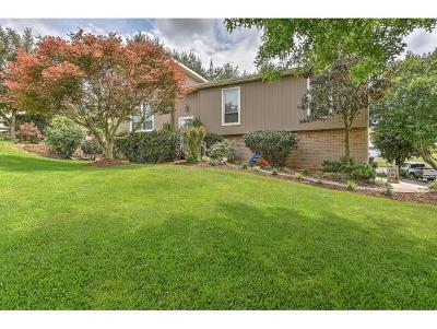 Jonesborough Single Family Home For Sale: 304 Heritage Ln