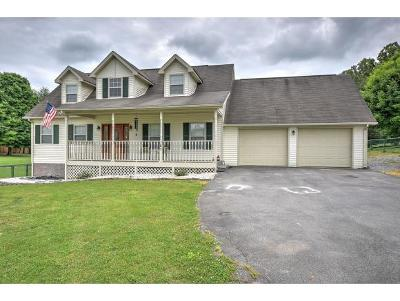 Jonesborough Single Family Home For Sale: 167 Old Embreevillerd
