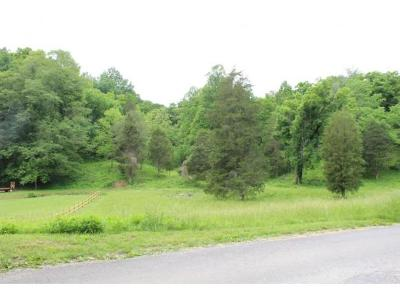 Residential Lots & Land For Sale: Ebbing Flowing Spring Rd.