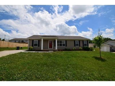 Dandridge TN Single Family Home For Sale: $129,900