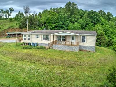 Greeneville Single Family Home For Sale: 3039 Roaring Fork Road