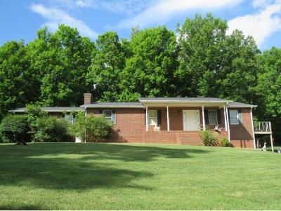 Blountville Single Family Home For Sale: 440 Tri State Lime Rd