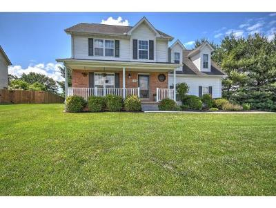 Johnson City Single Family Home For Sale: 4137 Bradford Ln
